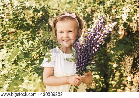 Little Girl With A Bouquet Of Lupines On The Field In The Summer. Blooming Lupine Flowers. Nature Co