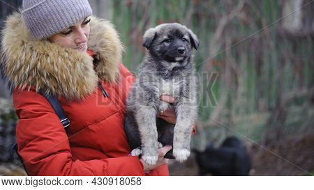A Young, Beautiful, Woman Is Hugging Dog. A Girl In A Red Jacket And A Purebred Dog. Caring Animals.