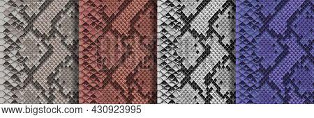 Snake Skin Seamless Patterns Set. Repeat Animal Backgrounds