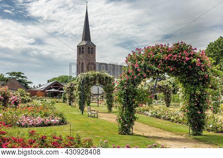 Dutch Rose Garden Near Church Of Lottum With Pathway And Pergola