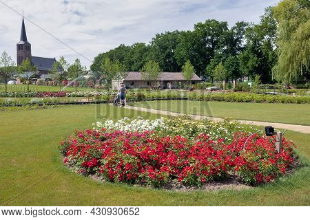 Lottum, The Netherlands - June 19, 2021: People Wondering Beautiful Roses In Public Garden