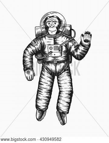 Monkey Astronaut Waving Hand. Chimpanzee Spaceman Cosmonaut Character. Fashionable Animal. Hand Draw
