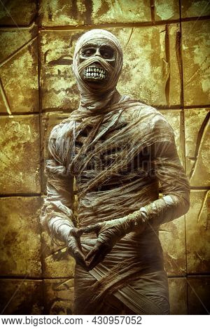 Portrait of a mummy standing by a wall with ancient Egyptian hieroglyphs. Halloween. Ancient Egyptian mythology.