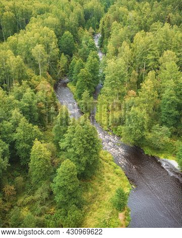The River In The Forest Lindulovskaya Grove On The Karelian Isthmus, Top View From A Drone