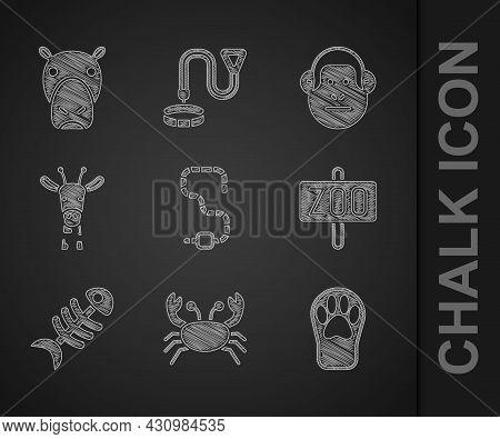 Set Worm, Crab, Paw Print, Zoo Park, Fish Skeleton, Giraffe Head, Monkey And Hippo Hippopotamus Icon