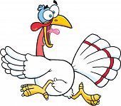 Illustration Of White Turkey Escape Cartoon Mascot Character poster