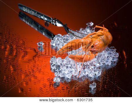 Boiled Crawfish On Ice
