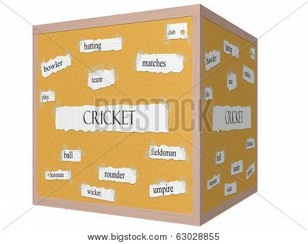 Cricket 3D Cube Corkboard Word Concept