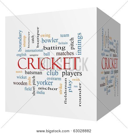 Cricket 3D Cube Word Cloud Concept