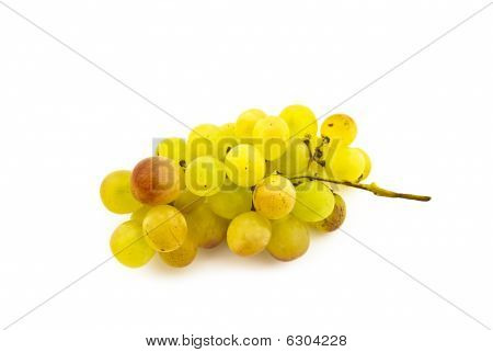 Cluster of ripe muscat grapes on a white background