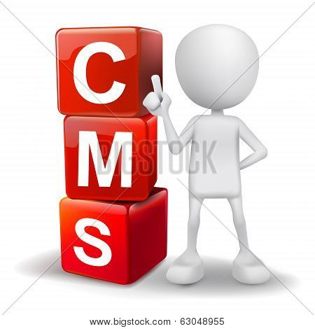 3D Illustration Of Person With Word Cms Cubes