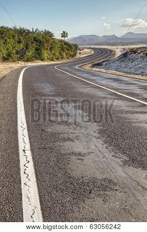 Curvy Road In Desert