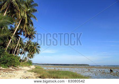 Footpath On The Beach