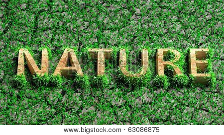 Wooden Eco word with grass on cracked earth