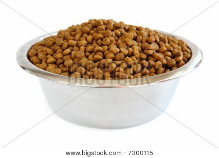 Dry Dog Food In A Stainless Steel Bowl