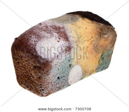 Old Musty Bread Isolated On White