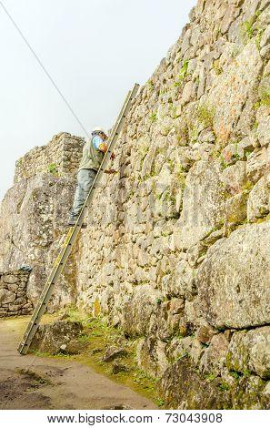 MACHU PICCHU, PERU - MAY 3, 2014 - Maintenance worker standing on a ladder works in ruins