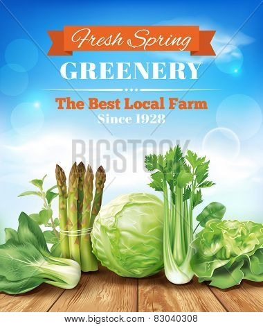 Spring vegetables poster design. Vector eps 10.