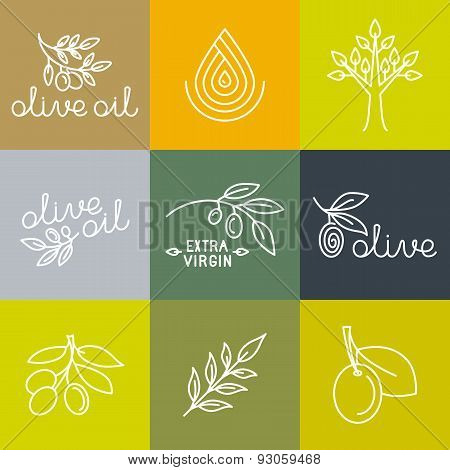 Vector Olive Oil Icons And Logo Design Elements