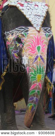 decorated elephant head