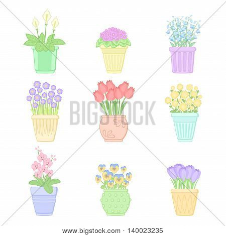 Flowers in pots. Vector illustration in pastel colors. Isolated on white background. Set of spring flowers.