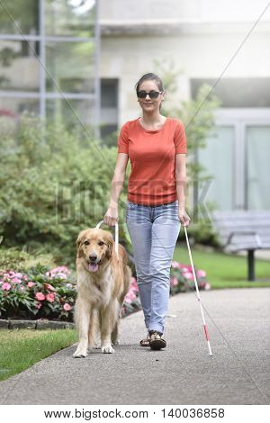 Blind woman walking in park with dog assitance
