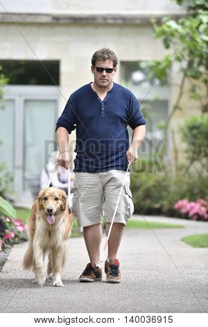 Blind man walking in park with dog assistance