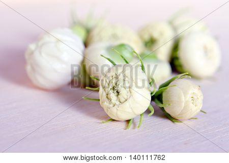 Jasmine Flower Bud Grouped On Wooden Board Background