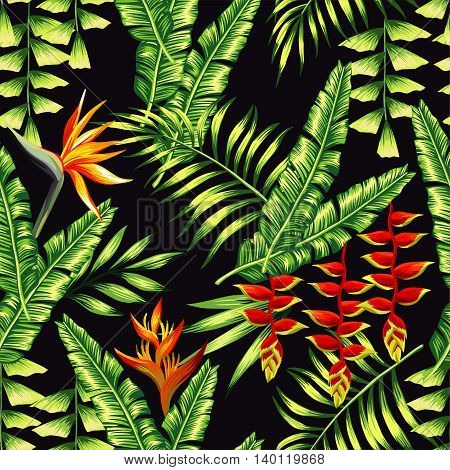 Print exotic tropic plants and palm trees banana leaf with lobster claws flower strelitzia on a black background. Seamless vector wallpaper pattern summer jungle art in trendy style of hand-drawing