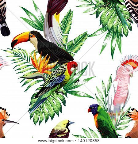 Tropical animals birds parrot maccaw and toucan on branch exotic floral banana palm beach tree. Seamless vector wallpaper pattern flower Strelitzia. Decorative abstract design on a white background.