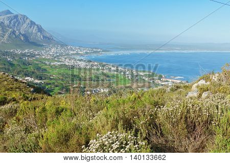Beautiful view of Hermanus and ocean beach, South Africa