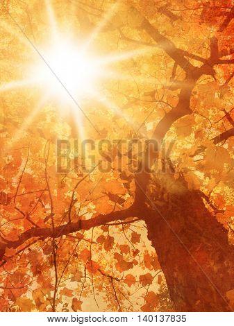 Autumn tree in vintage painting style