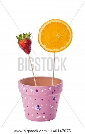 strawberry and slice orange on stick isolated on white background