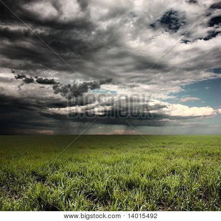 Storm clouds with rain over meadow with green grass poster
