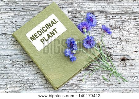 Medicinal plant Centaurea cyanus commonly known as cornflower and herbalist handbook on old wooden table