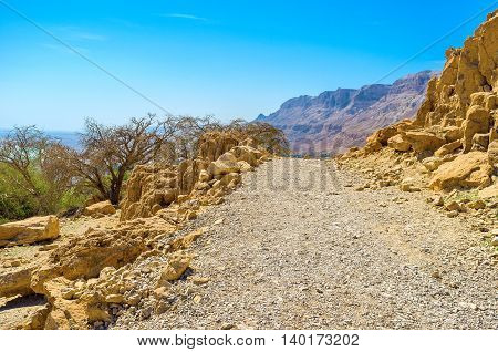 The wide road in mountains of Judean Desert was paved for the vehicular connection among the objects of Ein Gedi Nature Reserve Israel.