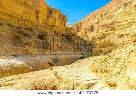 The deep gorge stretches in Judean desert along the mountain river Ein Gedi Israel.
