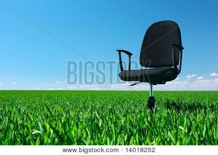 Büro Stuhl stehend auf der grünen Wiese