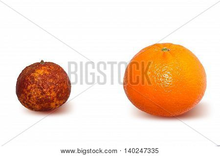 Genetically Modified Fruits