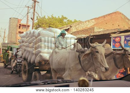 Delhi, India, october 16, 2011: Traffic on the road in India, Buffaloes tuk tuk rickshaw