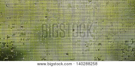 Website banner of a mosquito wire screen on the window with water drops