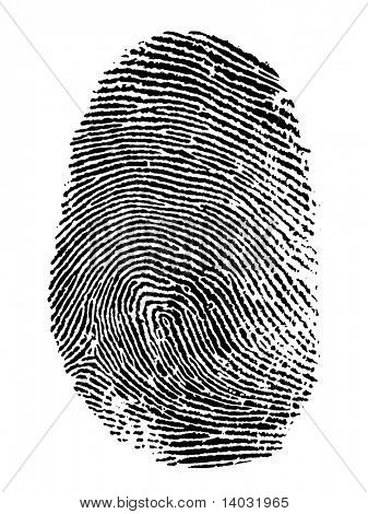 thumb print on white background