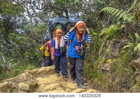 Ranau,Sabah-March13,2016:Mountain porter transporting heavy luggage to Laban Rata.Most of these mountain guides had worked as porters,carrying the belongings of visitors right up to the of Mt Kinabalu