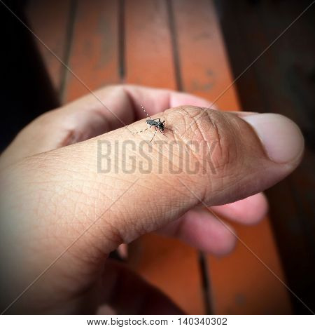 Mosquito bites thumb with a wood background.