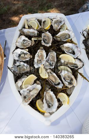 Platter of fresh organic raw oysters at restaurant
