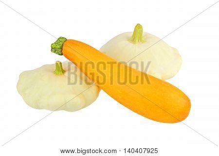 Scalloped Custard And Marrow Squash (cucurbita Pepo Var. Patisson)