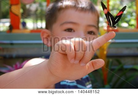 child inspecting a butterfly that landed on his finger