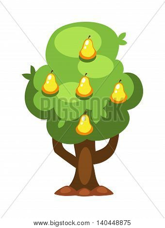 Pear tree isolated on white background and orange tree vector nature fruit tree. Garden green pear tree design and agriculture natural plant. Sweet summer tangerine green pear tree.