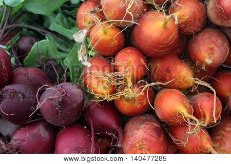 Golden and red beets for sale at a Farmer's Market