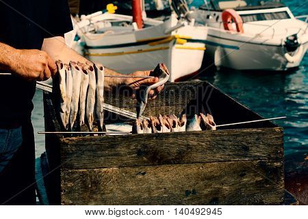 the fresh  fish are impaled for smoking
